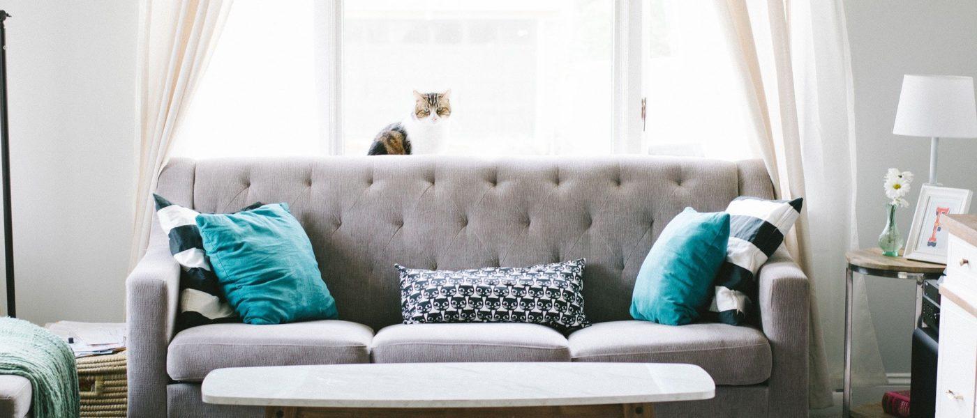 Как да обновим стария диван, за да изглежда като нов